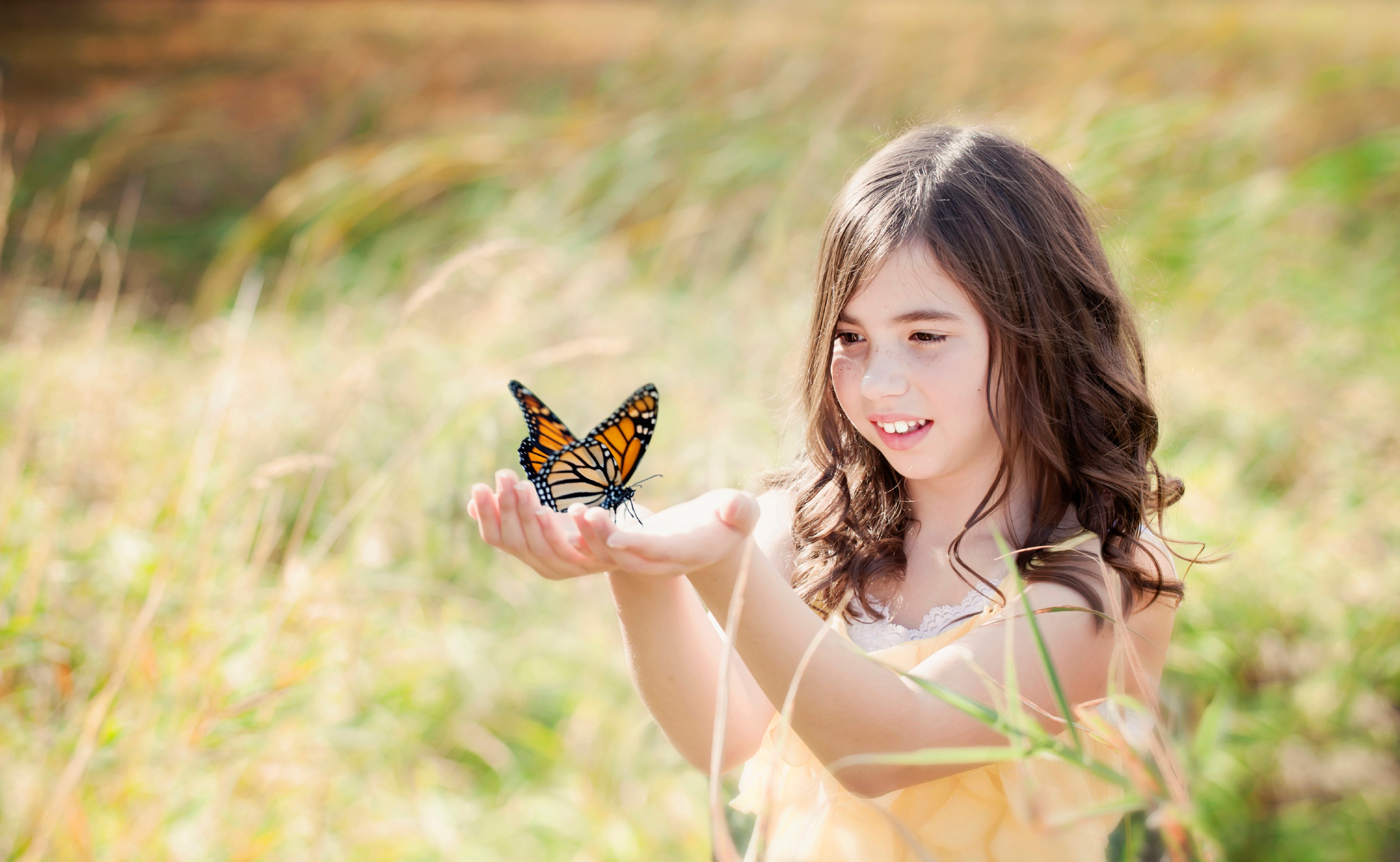 Tcf Butterfly Girl Grief Support Parents Bereaved